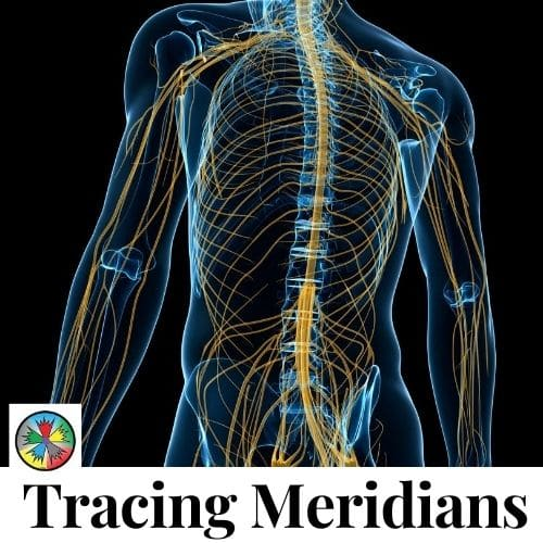 Tracing Meridians